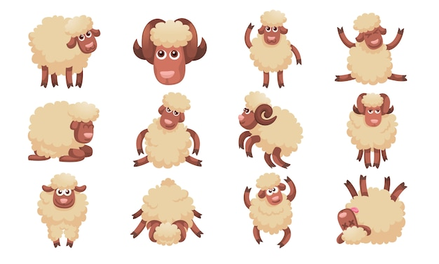Conjunto de iconos de ovejas, estilo de dibujos animados