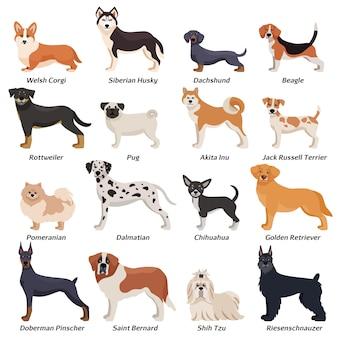 Conjunto de iconos de perros de raza pura color