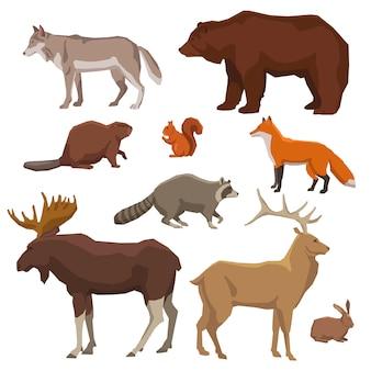 Conjunto de iconos pintados de animales salvajes