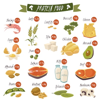 Conjunto de iconos planos de alimentos ricos en proteínas