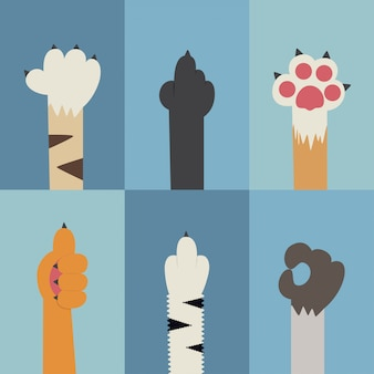 Conjunto de iconos planos de pata de gato