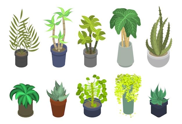 Conjunto de iconos de plantas de interior, estilo isométrico