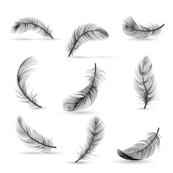 Conjunto de iconos de pluma negra aislada y realista pluma cayendo lentamente