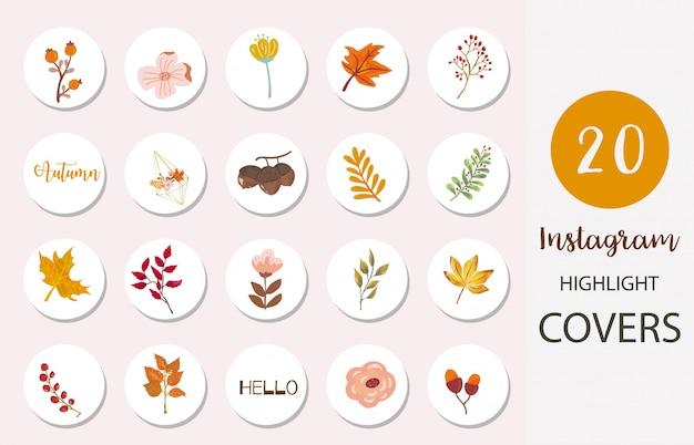 Conjunto de iconos de portada destacada de instagram con hojas y nueces