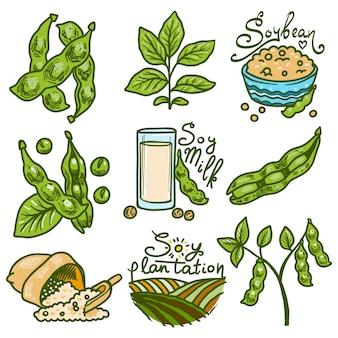 Conjunto de iconos de soja. dibujado a mano conjunto de vectores de soja