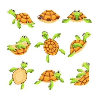 Conjunto de iconos de tortuga feliz
