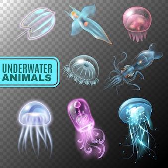 Conjunto de iconos transparente bajo el agua