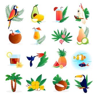 Conjunto de iconos tropicales con cócteles flores frutas y pájaros