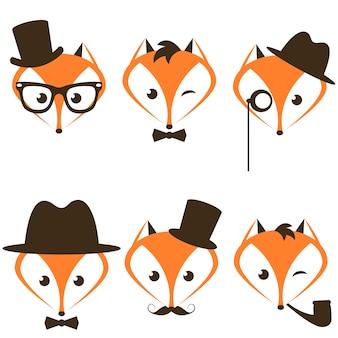Conjunto de iconos de zorro hipster