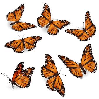 Conjunto de ilustración aislada de mariposas voladoras tropicales naranjas