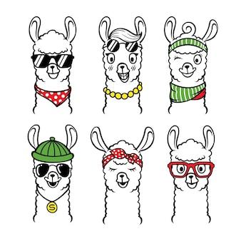 Conjunto de ilustración animal llama con gafas de sol
