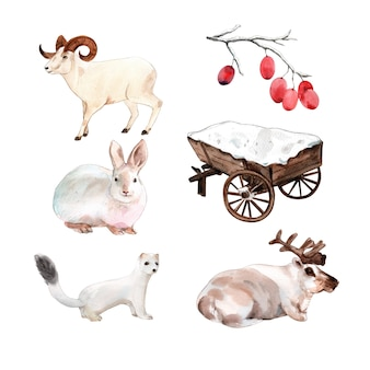 Conjunto de ilustración de animales de invierno acuarela aislado.