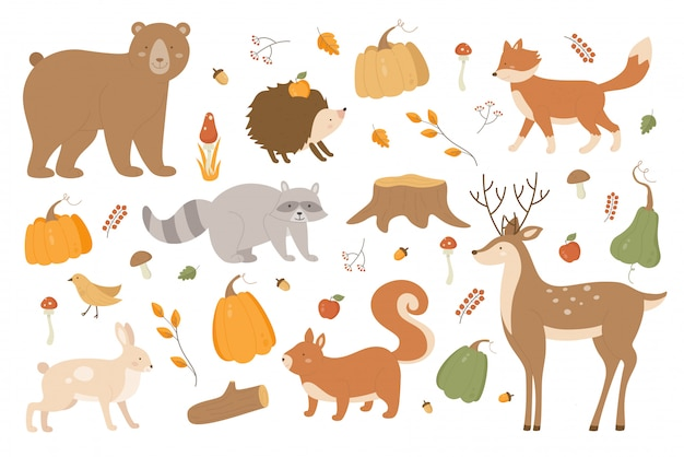 Conjunto de ilustración de animales de otoño. colección de la temporada de otoño del bosque de dibujos animados con personajes de zorro erizo liebre oso mapache ciervos, ramas de árboles y setas otoñales, calabaza en blanco