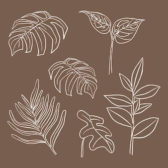 Conjunto de ilustración botánica de doodle de vector de hoja tropical