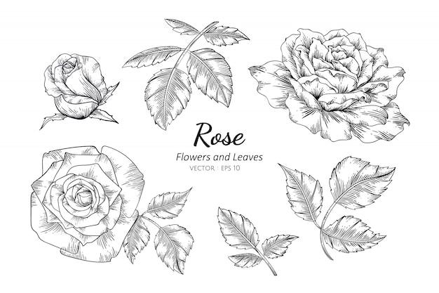 Conjunto de ilustración de dibujo de flor rosa con arte lineal
