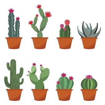 Conjunto de ilustración de diseño plano lindo cactus cactus planta olla