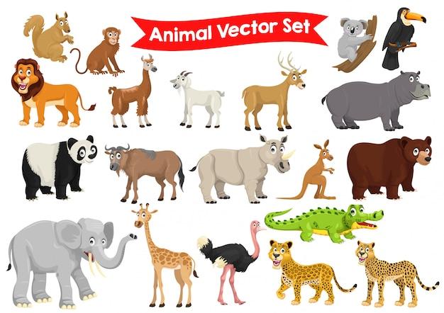 Conjunto de ilustración gráfica de dibujos animados de animales