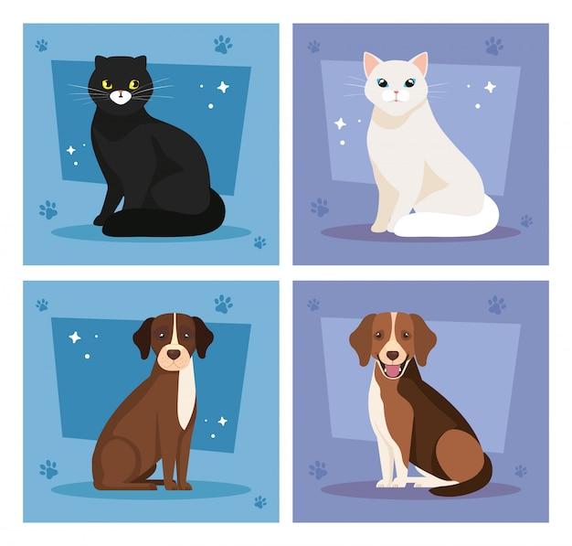 Conjunto de ilustración de lindos gatos y perros ilustración