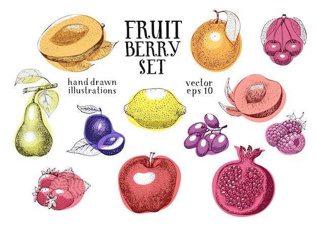 Conjunto de ilustración de vector dibujado a mano de frutas