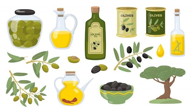 Conjunto de ilustración de vector de oliva