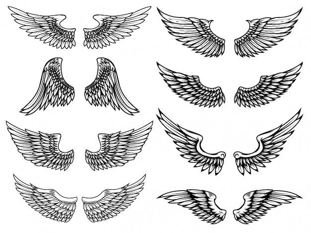 Conjunto de ilustraciones de alas vintage sobre fondo blanco. elemento para logotipo, etiqueta, emblema, signo. ilustración.