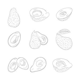 Conjunto de ilustraciones de contorno de aguacate entero y cortado