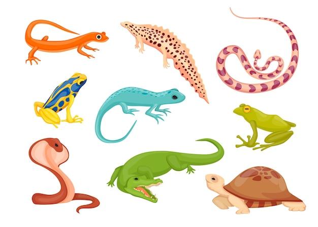 Conjunto de ilustraciones de especies de reptiles y anfibios.