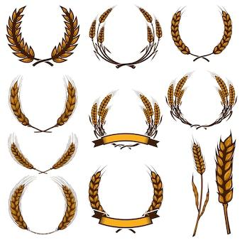 Conjunto de ilustraciones de espiguillas de trigo aisladas sobre fondo blanco. elemento de diseño de cartel, tarjeta, emblema, letrero, tarjeta, banner. imagen