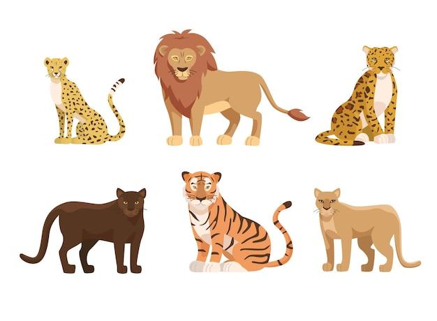 Conjunto de ilustraciones de grandes felinos de áfrica y américa del norte