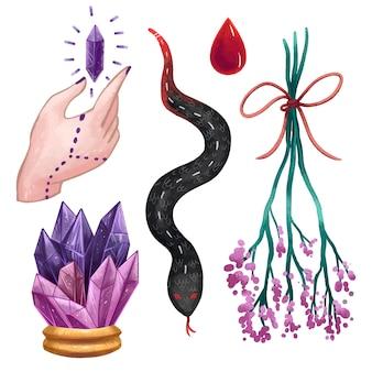 Un conjunto de ilustraciones mágicas en procrear objetos de brujas, un gran cristal, un cristal mágico en la mano, una gota de sangre, una serpiente, una ramita con flores moradas.