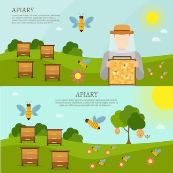 Conjunto de ilustraciones planas de dulce miel abeja vector