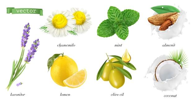 Conjunto de ilustraciones de plantas y sabores medicinales.