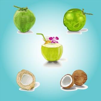 Conjunto de imágenes prediseñadas de cóctel de coco