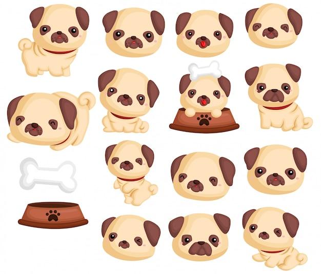 Conjunto de imágenes de pugs