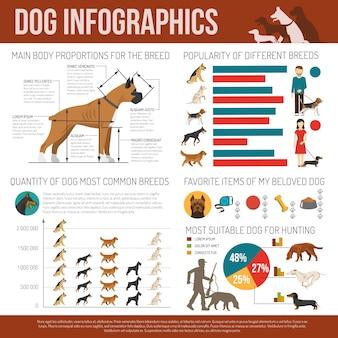 Conjunto de infografía de perro