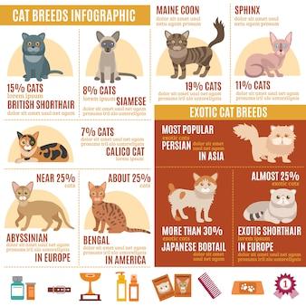 Conjunto de infografías de gatos.