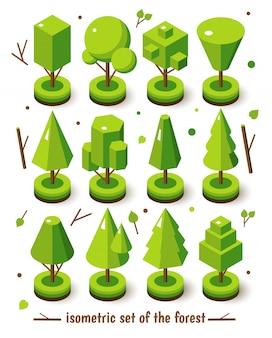 Conjunto isométrico árbol brillante
