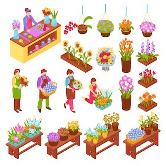 Conjunto isométrico de floristería