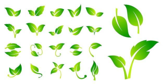 Conjunto de letreros veganos de hoja o etiqueta vegana verde o producto de insignias naturales verdes o vegano bio ecológico