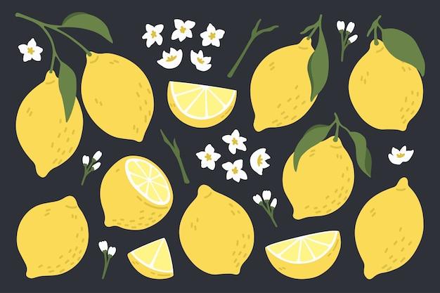 Conjunto de limones frescos enteros y trozos