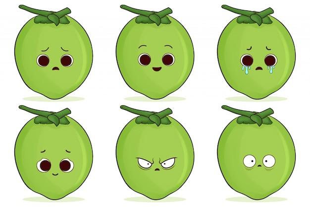 Conjunto de lindo coco verde