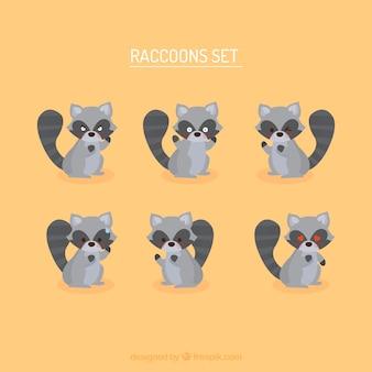 Conjunto lindo de la historieta de los mapaches