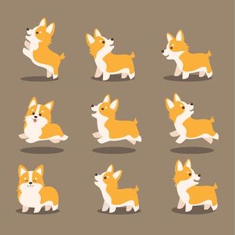 Conjunto lindo de la ilustración del vector del perro del corgi