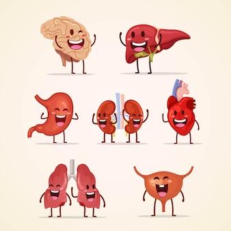 Conjunto de lindo personaje humano con órganos internos.