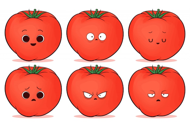 Conjunto de lindo tomate rojo