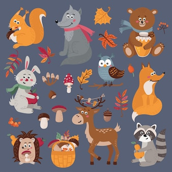 Conjunto de lindos animales del bosque