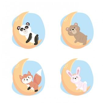 Conjunto de lindos animales salvajes en la luna.