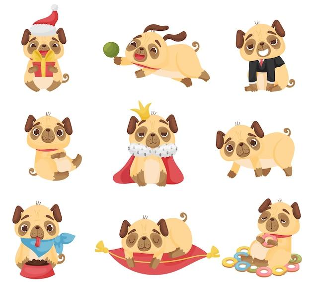 Conjunto de lindos cachorros en diferentes poses.