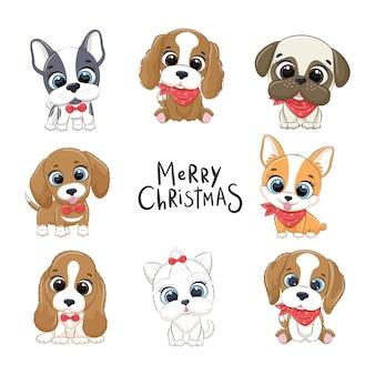 Conjunto de lindos cachorros