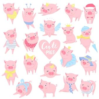 Conjunto de lindos cerdos rosados